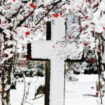6 Reading Plans for Lent