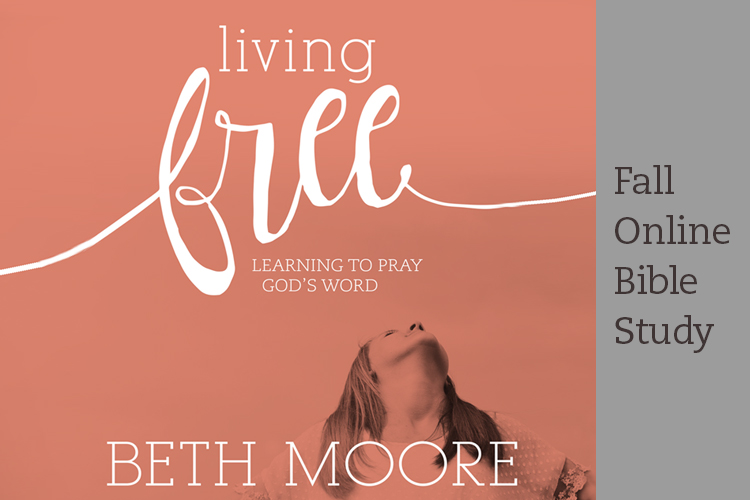 Living Free Fall Online Bible Study | Sign Up