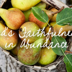 God's Faithfulness in Abundance