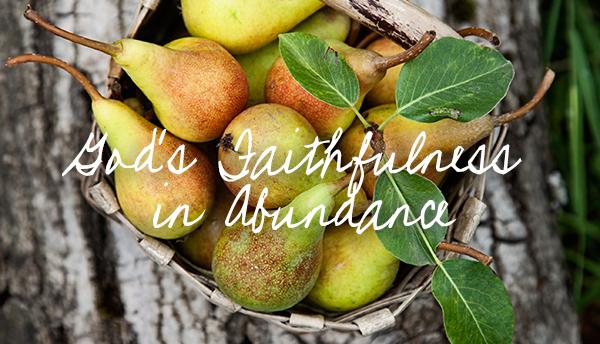 God's Faithfulness in Abundance