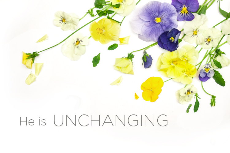 Attributes of God | He is Unchanging