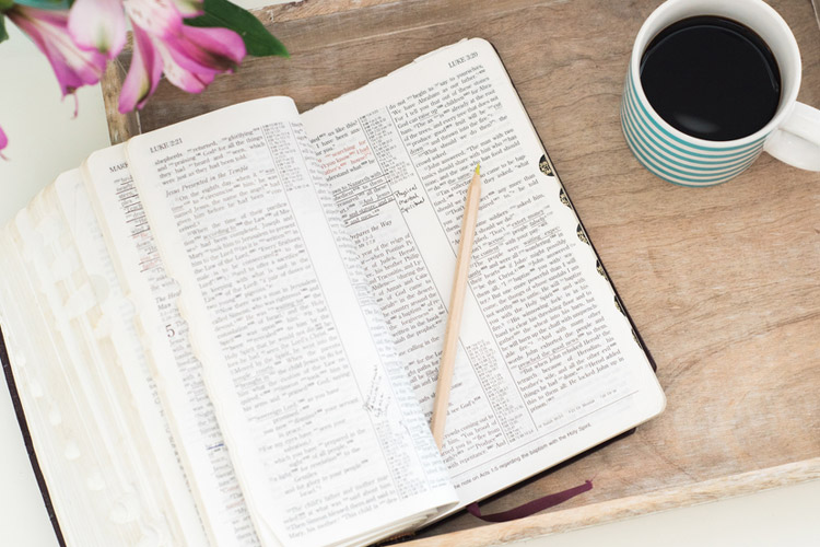 Bible Study Workshop | A National In-Store Event