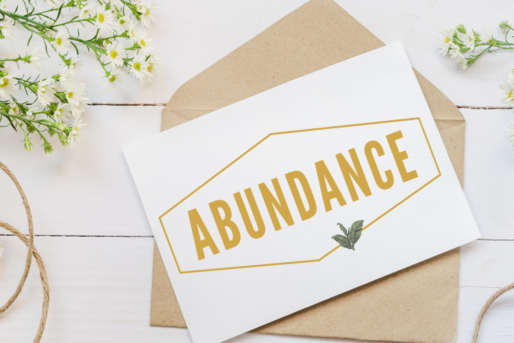 Abundance Prize Pack Giveaway