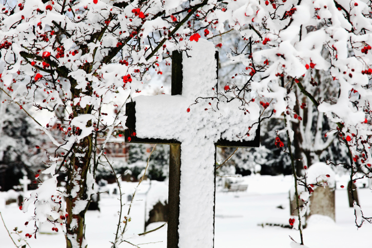 snow cross lent